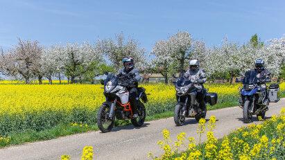 Maibaum-Kontroll-Fahrt durch den Schwarzwald