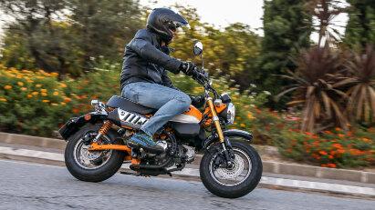 Honda Monkey: Fahrtest des Kult-Bikes