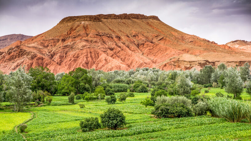 Marokko Motorrad Reisen Boumalne - Dades