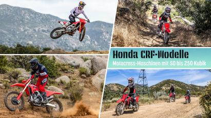 Honda CRF: Motocross-Maschinen mit 50 bis 250 Kubik des Jahrgangs 2022