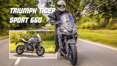Triumph Tiger Sport 660: Trident-Gene für die Tiger Sport