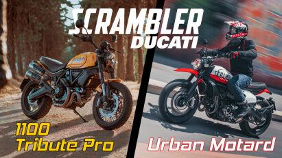 Premiere: Ducati Scrambler 1100 Tribute Pro & Urban Motard