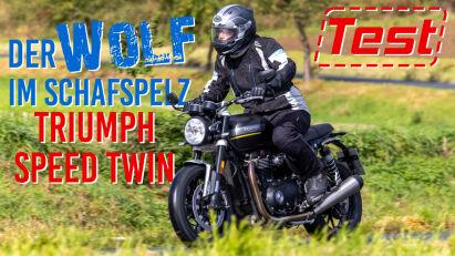 Triumph Speed Twin im Test: Der Wolf im Schafspelz