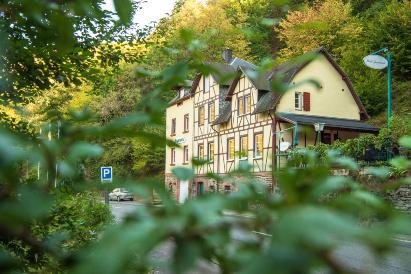 Boutique-Hotel Jungenwald