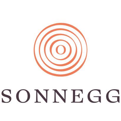 Hotel Sonnegg