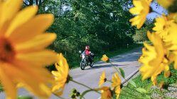Motorradtour: Köterberg - Vom Harz ins Weserbergland & retour!