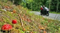 Motorradtour: Sagenhafter Harz