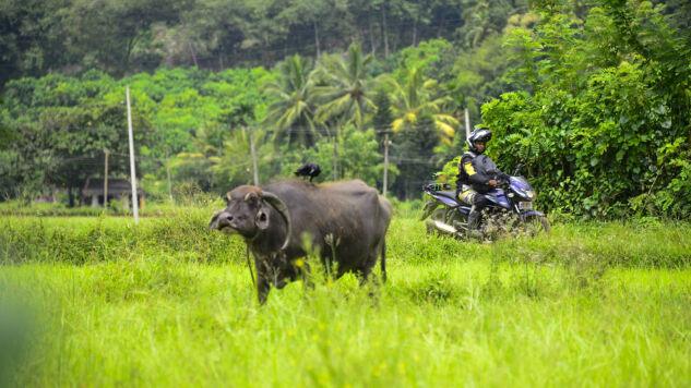Motorradreise - Sri Lanka mit Dylan Wickrama